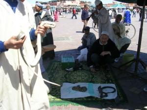 Encantadores de serpientes, Marruecos